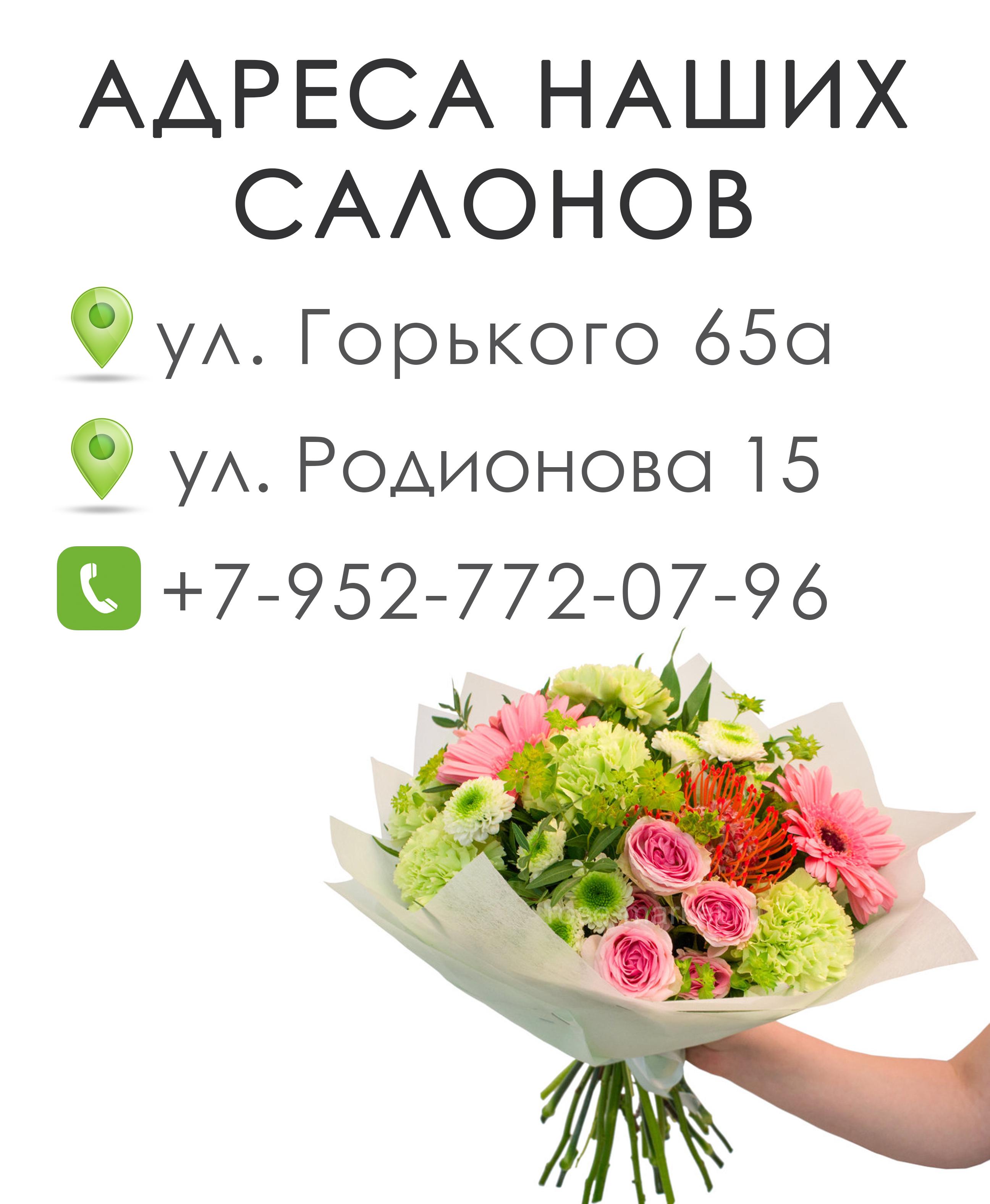 Доставка комнатных цветов в нижнем новгороде служба доставки цветов саранск
