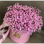 Розовая гипсофила в коробке
